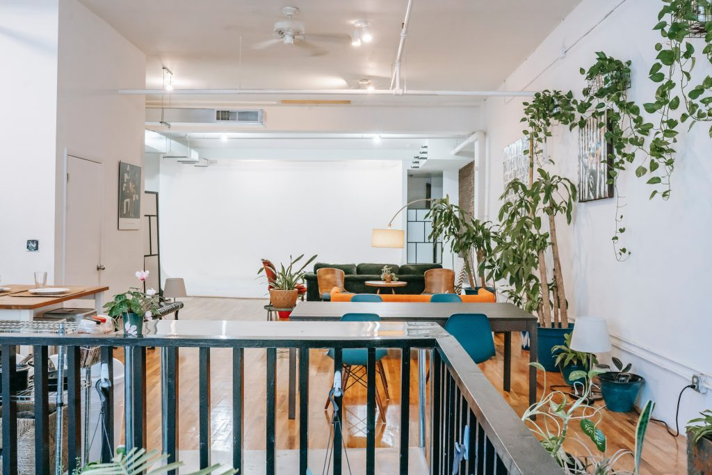 Large open room decorated with plants