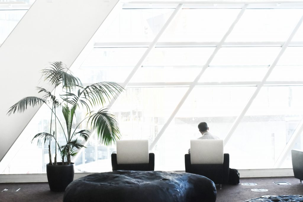 Modern office with large windows and plants