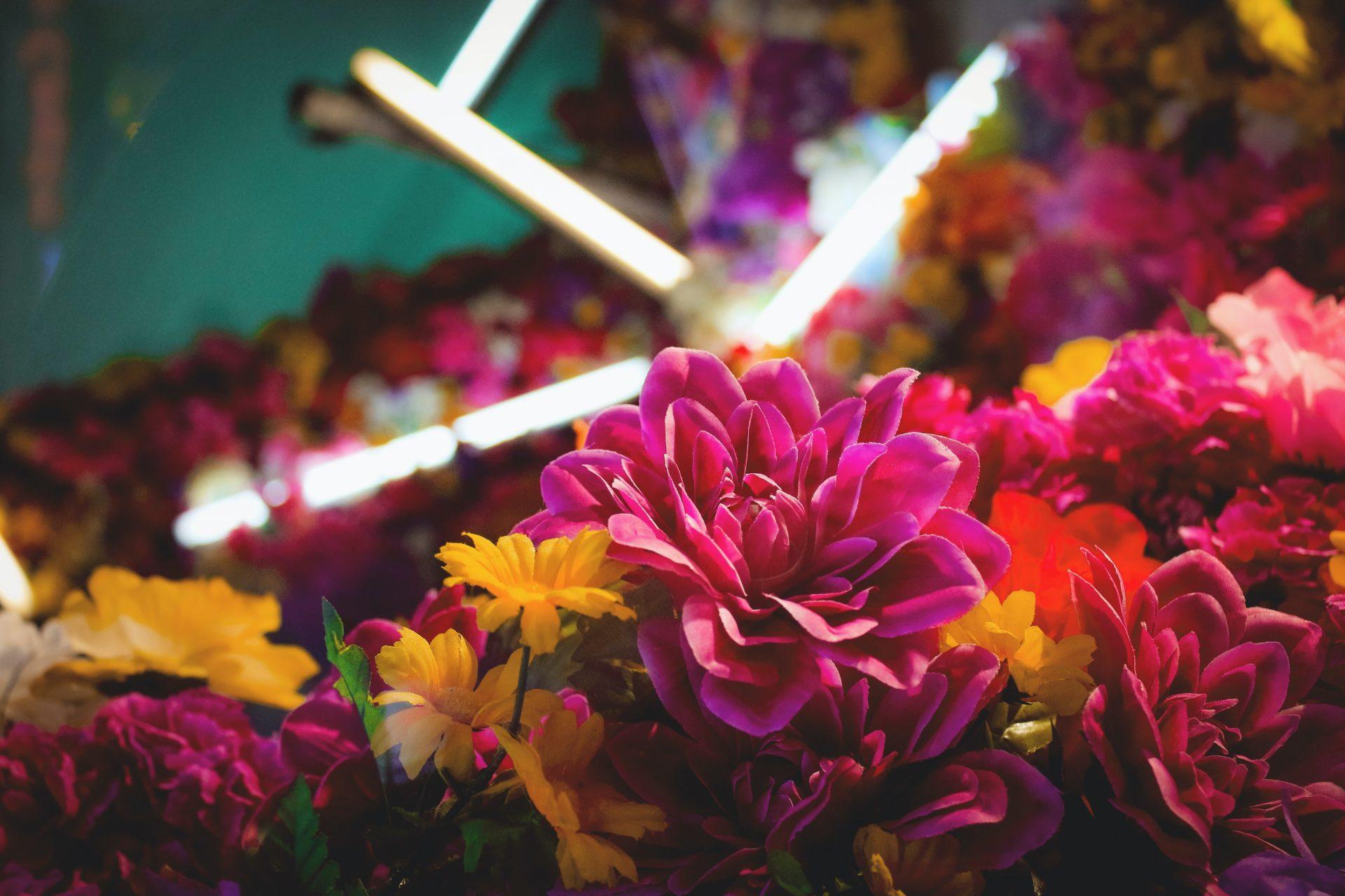 Fleurs et lumière LED