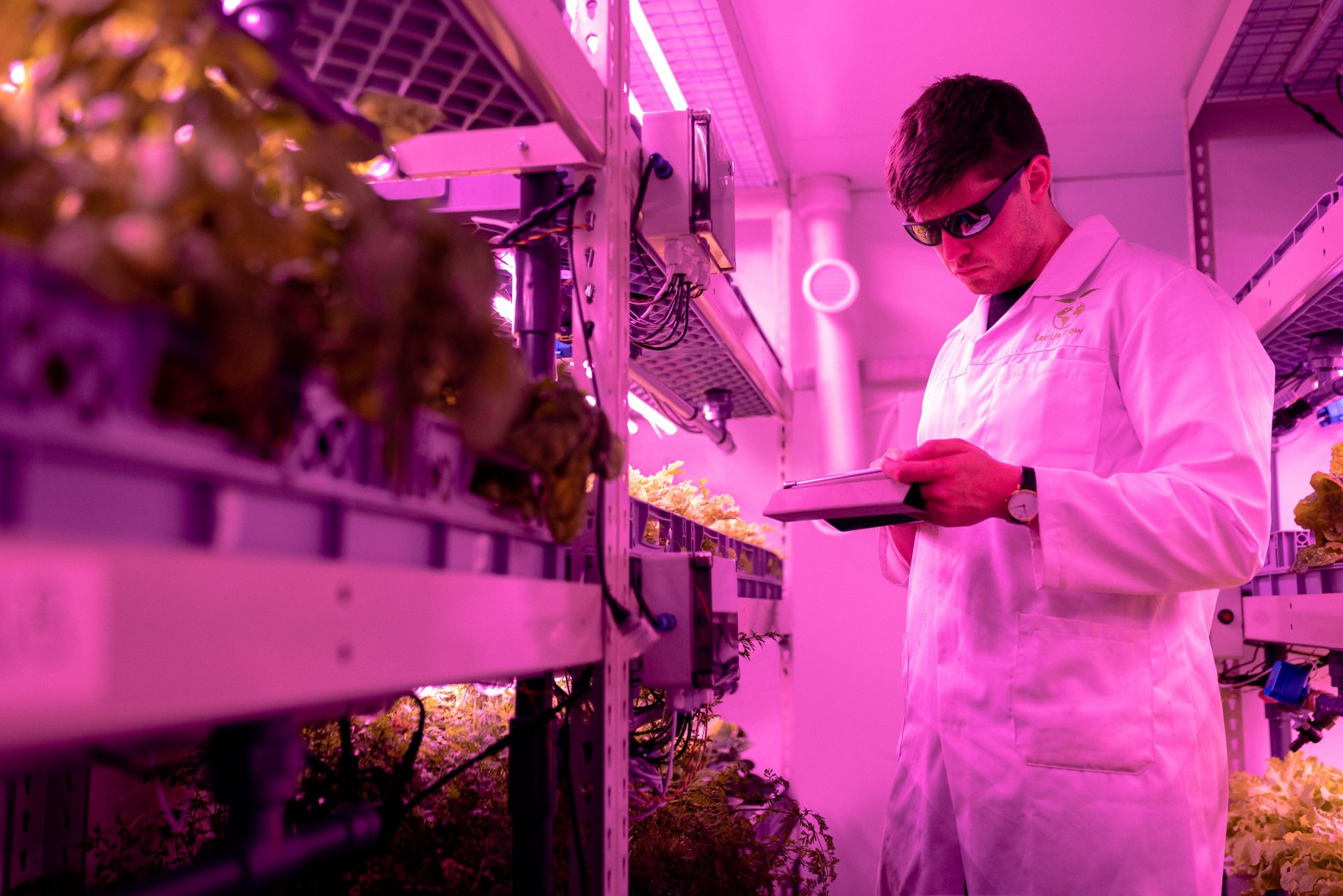 Scientifique qui utilise le LED pour faire pousser ses plantes